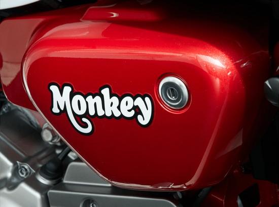 monkey125-11