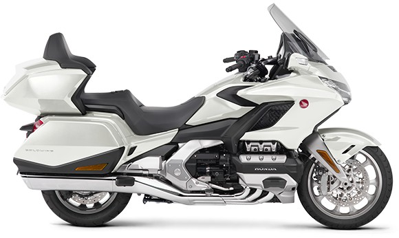 gold wing-2019-14