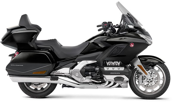 gold wing-2019-15