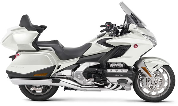 gold wing-2019-18