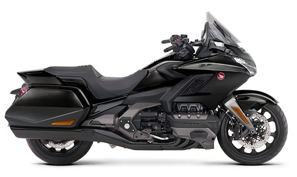 gold wing-2019-8