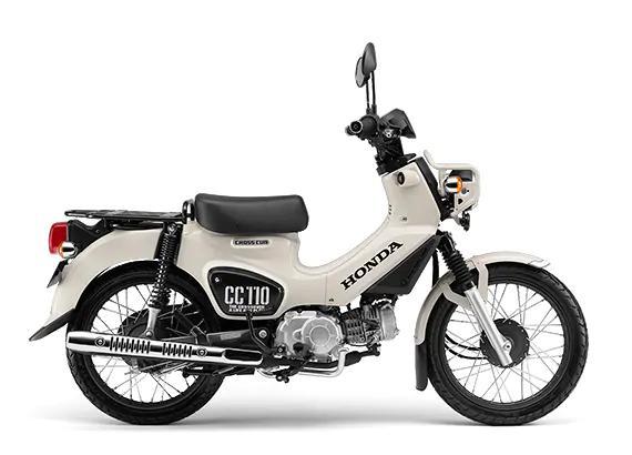 cross-cub-50-110-2019-11