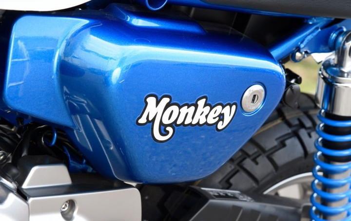 monkey-125-2019-3